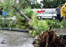 از طوفان شب گذشته مازندران خسارتی گزارش نشده است
