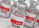 تاریخ عرضه و قیمت واکسن کرونای ساخت چین معلوم شد