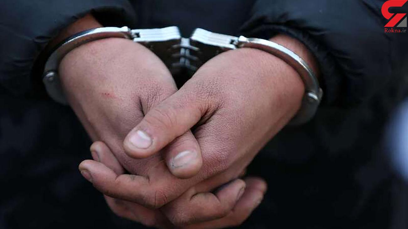 دستگیری ۱۷ سارق در طرح ارتقاء امنیت اجتماعی ساری
