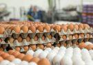 فاصله قیمت مصوب و آزاد تخم مرغ به ۵ هزار تومان رسید