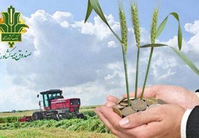 صندوق بیمه کشاورزی 118درصد در اجرای برنامه ابلاغی سال زراعی موفق بود