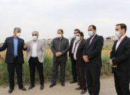 پیگیری شهردار و اعضای شورای شهر بابل جهت ساماندهی تالاب موزیرج (جنوبی)
